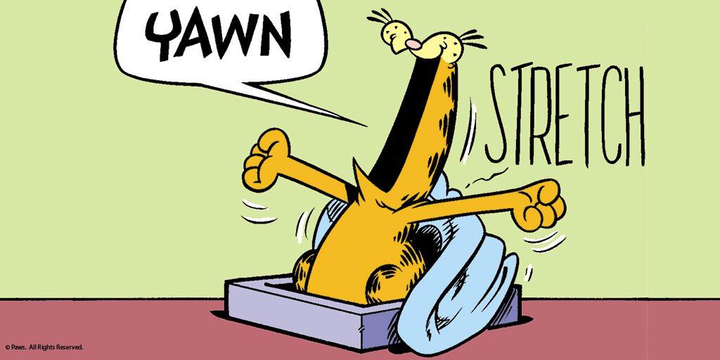 Garfield's photo on #thursdaymorning