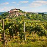 Image for the Tweet beginning: Foodie experiences in Istria, Croatia's
