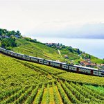 Image for the Tweet beginning: Vevey: wining and dining on