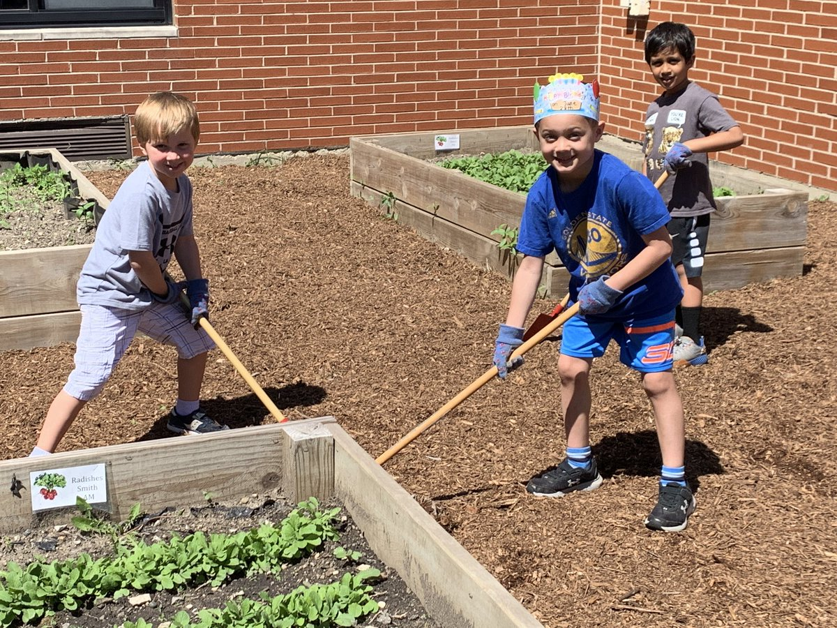 Our #WBPandas are working so hard today in their kinder-garden! What a great outdoor ed experience for our learners! @WestbrookRoom13 #WeAreD34 🍃🌿