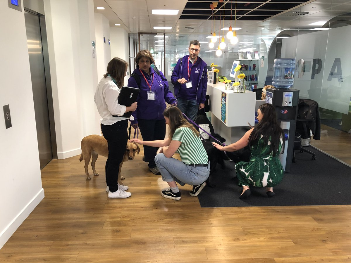 Today @doggyDS came to visit our very excited @Zopa HQ as part of our fortnight of activities around #MentalHealthAwarenessWeek absolutely recommend 👍🏼