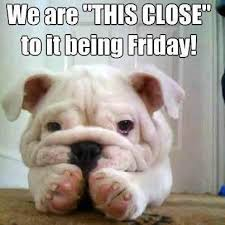 Who else is feeling this way? #ThursdayMood #FridayEve <br>http://pic.twitter.com/yCJjLxfTNC
