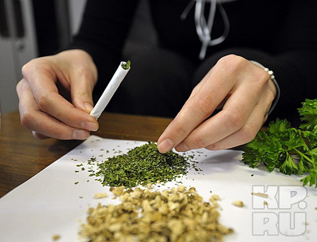 Как правильно приготовить коноплю к курению листья марихуаны сворачиваются