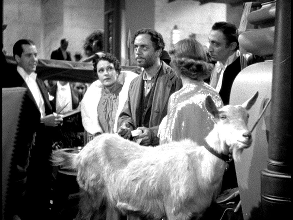 Happy Friday to all the members of the #LateNightMovie Gang!  Today is National Scavenger Hunt Day!  Can you find both a goat and a forgotten man?