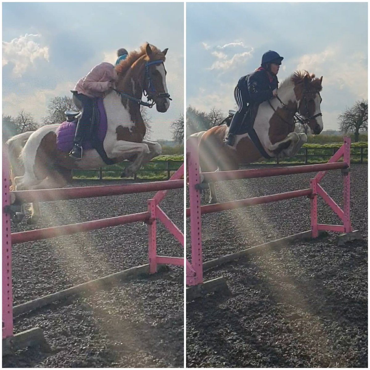 FOR SALE  2 very competitive ponys that will jump anything you put in front of them. Unfortunately my kids are getting to big and need some bigger ones. Dm me for details