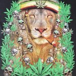 Image for the Tweet beginning: Check out Jah #Rasta Lion