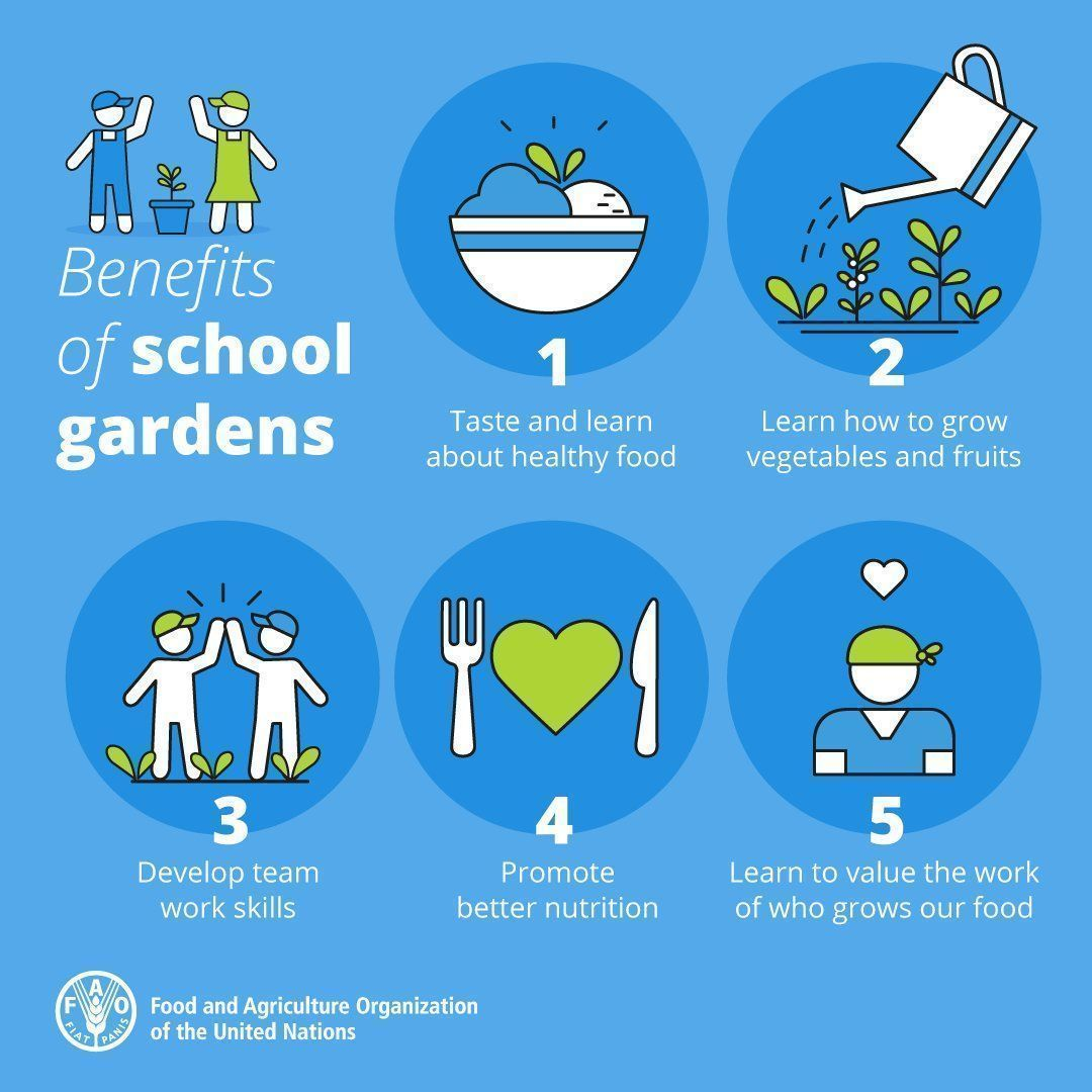 School gardens are a great way to teach children about respect for food.   #ZeroHunger #FutureofFood