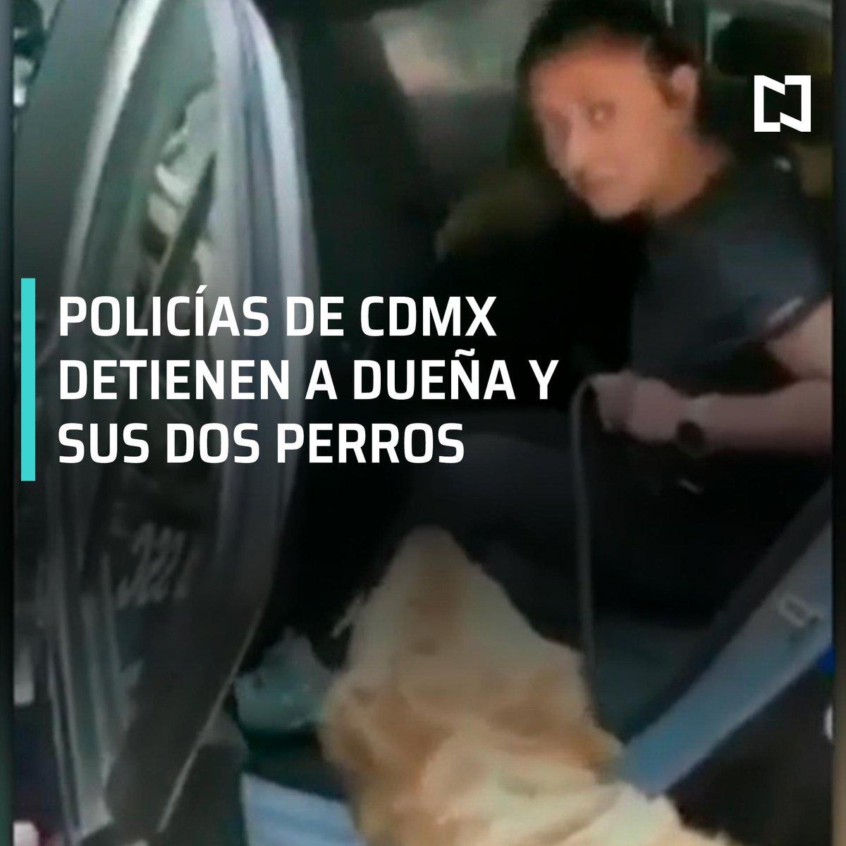 ¿Para cuándo los asalta-restaurantes y los roba-celulares del metro?Policías detienen a una mujer y sus dos perros por meterse a jugar a una fuente; el juez cívico le impuso a la señora cumplir 13 horas de detención, sin derecho a fianza. #LasNoticiasConDanielle con @daniellemx_