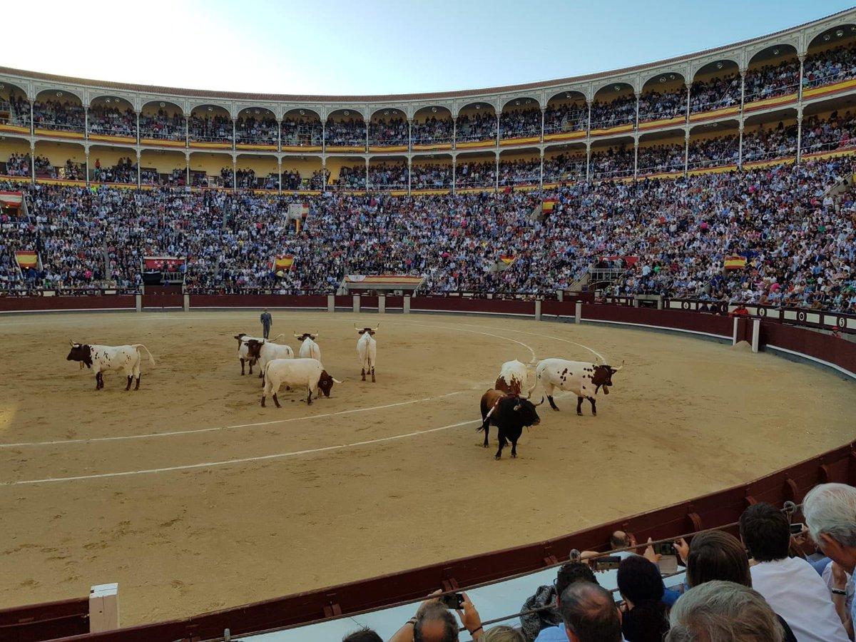 Marketing Toros's photo on El Juli