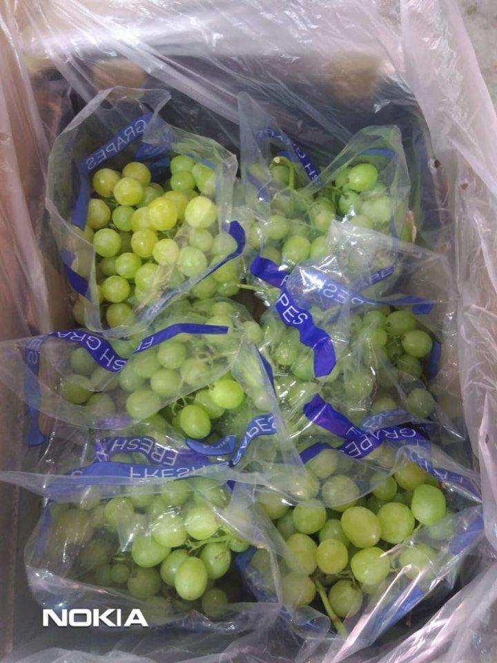 Pioneer For Export-Herbs-Seeds-Vegetables-Fruits (@ForPioneer) | Twitter