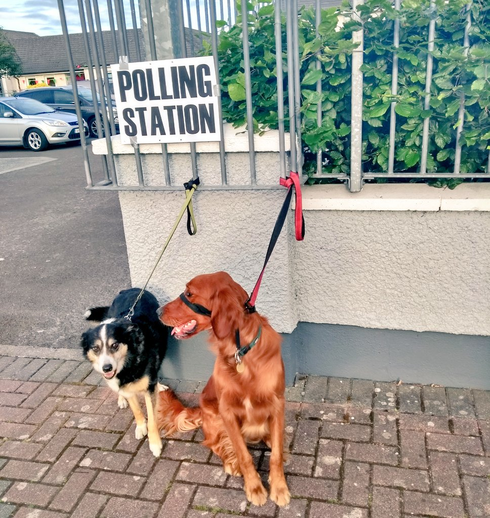 Nancy and Malcolm urge you to watch out for the right and #VoteLeft. #DogsAtPollingStations #DogsAtPollingPlaces #Tipperary #LE19 #EP2019