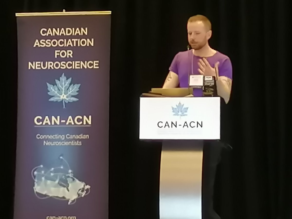 Artificial neural networks have found good solutions to the credit assignment problem. Can we solve this problem for the brain? Does the brain need to solve this problem in order to learn? Fascinating talk by @tyrell_turing. Bridging AI and the brain. #CAN2019  #compneuro #KCNhub<br>http://pic.twitter.com/4g4GBVmsfm