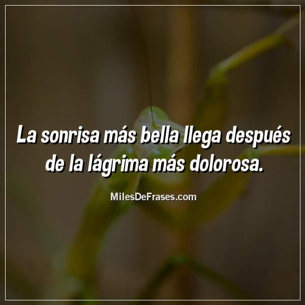 Frases En Imágenes A Twitter La Sonrisa Más Bella Llega