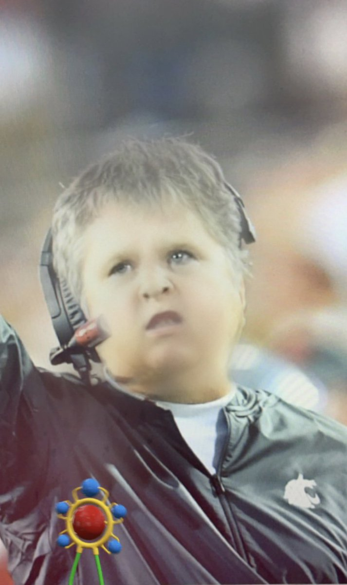 Baby Filter: WSU Cougars Edition   #GoCougs | #BabyFilter <br>http://pic.twitter.com/i1DA7Uk1ln