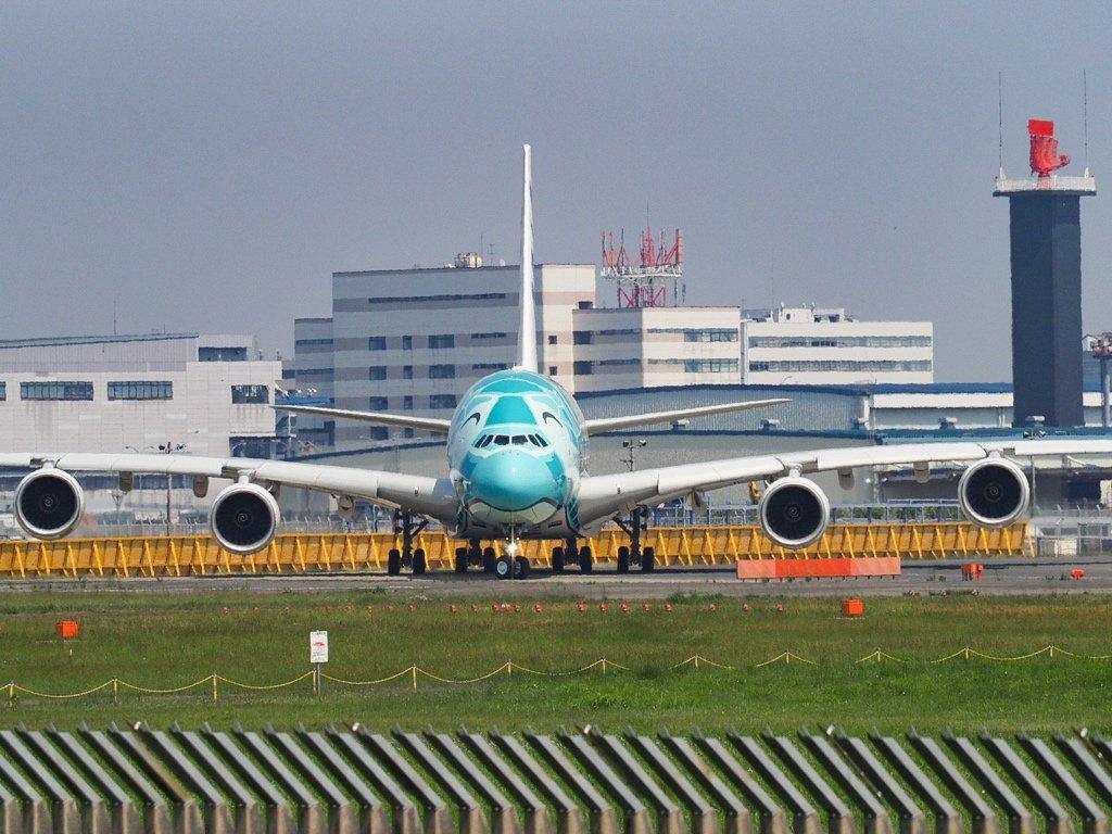 #A380 #flyinghonu #フライングホヌ #ANA RT @mr_misuta: ラニくんの到着を狙いに来たら、カイくんの慣熟?フライトを見れたん