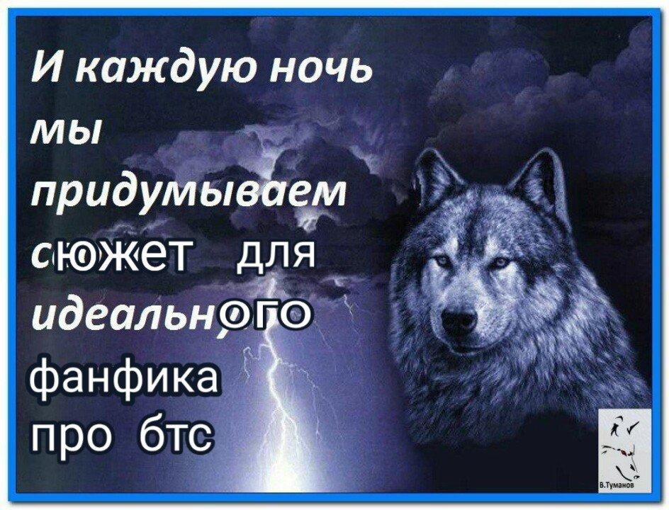 Красивые картинки с надписями о жизни волков, квиллинг годовщину картинки