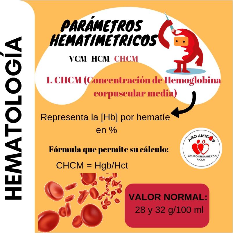 Conc hb corpusc media chcm