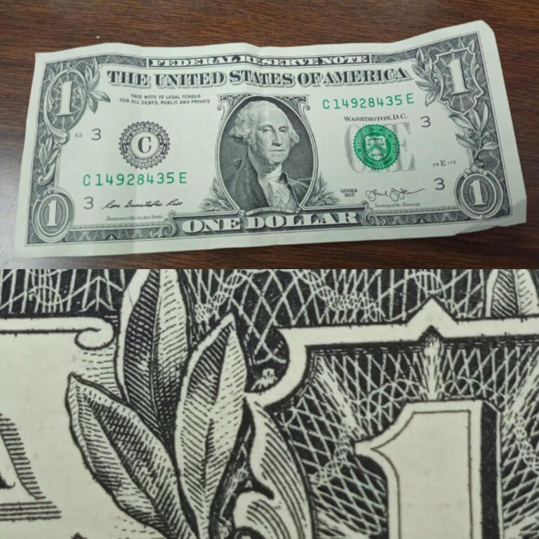 The web on a US dollar bill is actually being made by a spider? Who knew... Source: buff.ly/30YfOYY