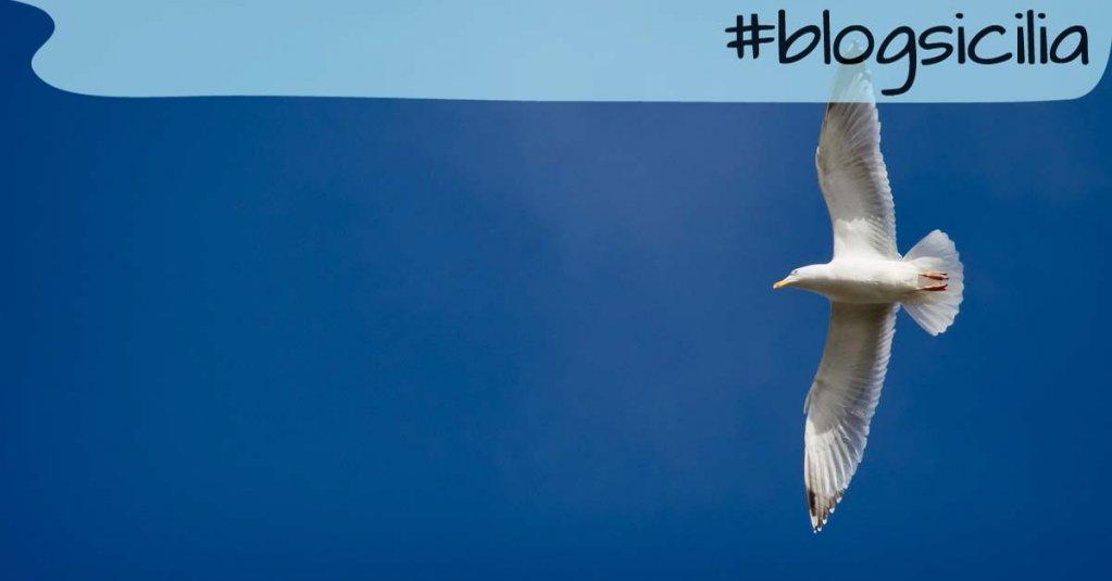 """""""Non smettere mai di sognare. Solo chi sogna impara a volare"""" Peter Pan  Buona serata da #blogsicilia"""