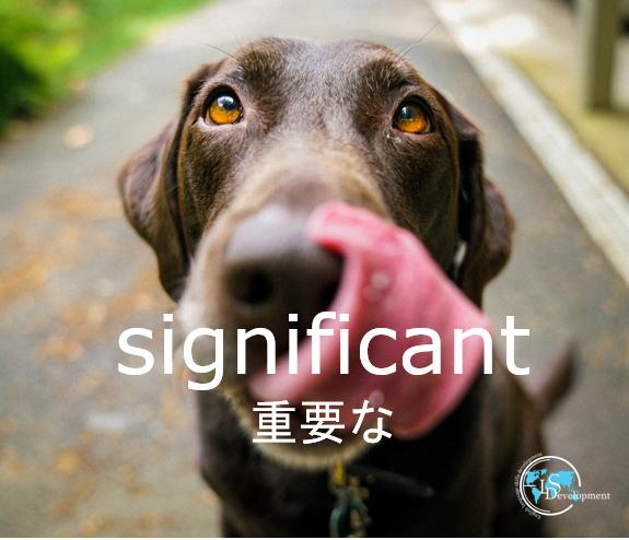 #一日一単語 #英単語 #英語の例文#重要な#significantIt is a significant document.これは重要な文書だ。?️ ?? #英会話教室 #英会話スクール #オンライン英会話 #英会話 #英単語帳 #勉強垢 #英語垢 #英語勉強垢 ※英単語は複数の意味を持つことがありこれは一例です。
