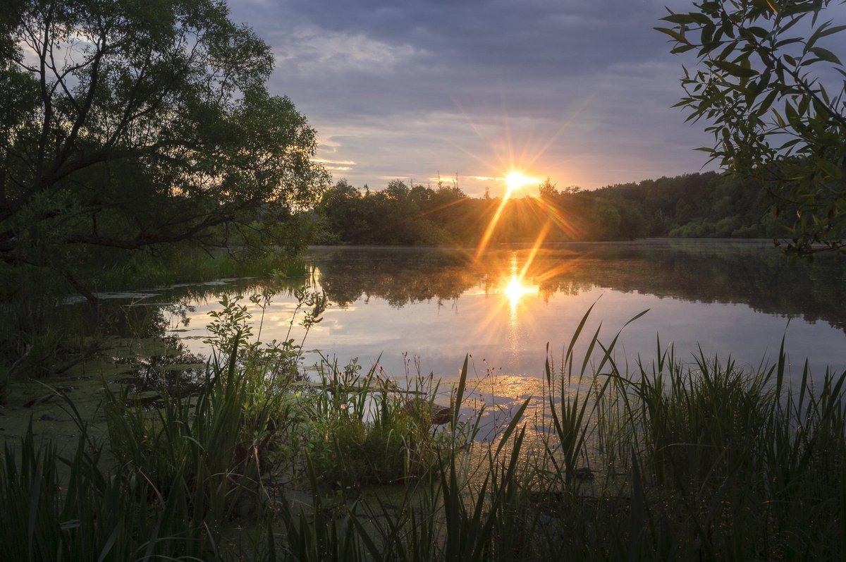 Река рассвет картинки