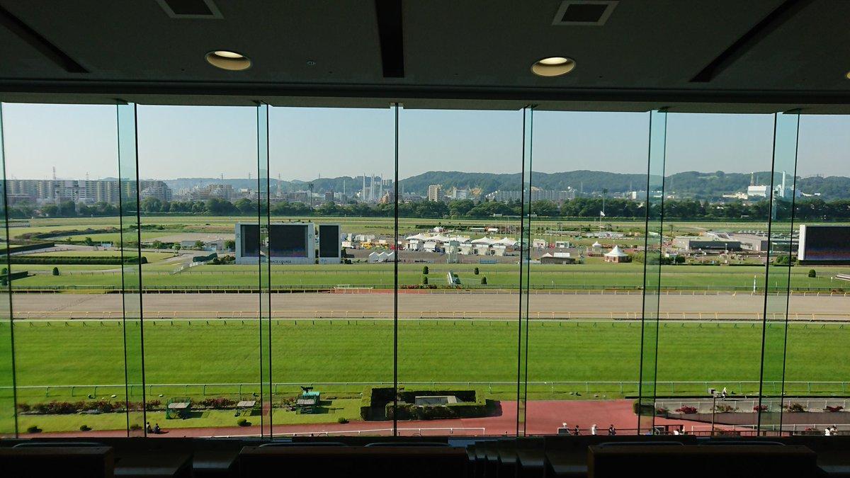 暑い日にS指定席で観戦できるって最高! #日本ダービー #東京競馬場