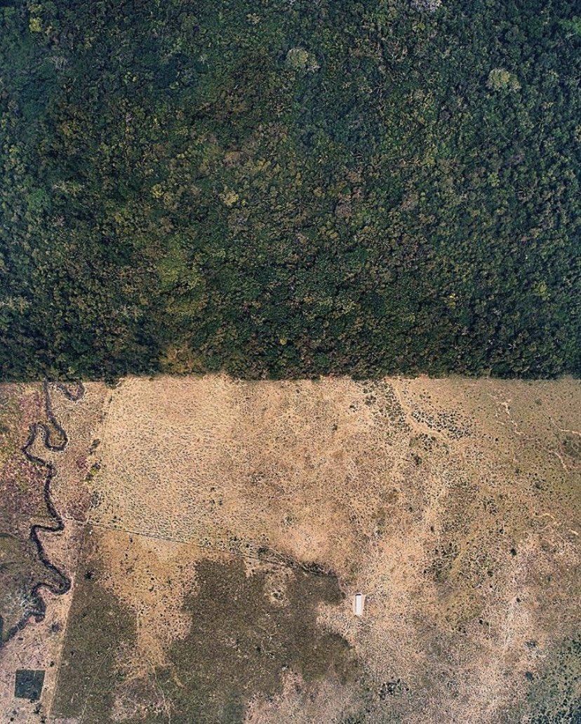 Esta foto es un ejemplo de la deforestación en Chiapas, nombrar al ex gobernador de ese estado como titular de la SEMARNAT es un grave error.