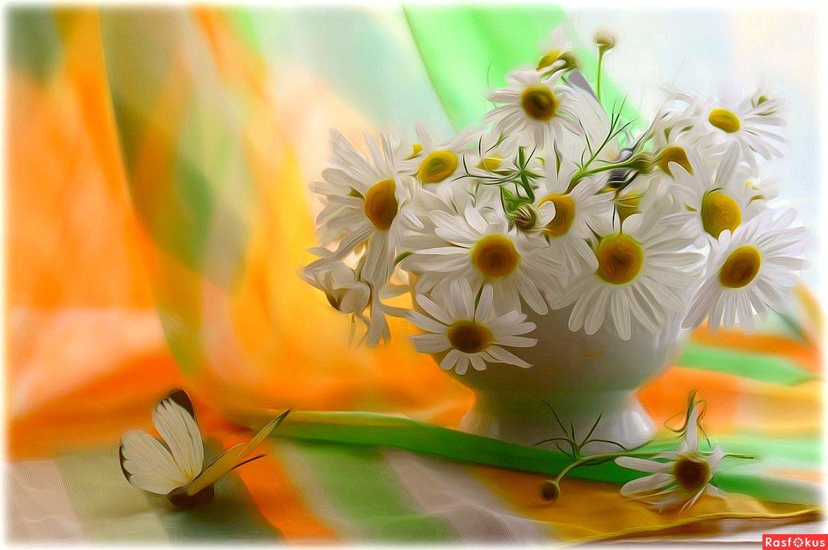 День, открытки с добрым утром позитива на весь день