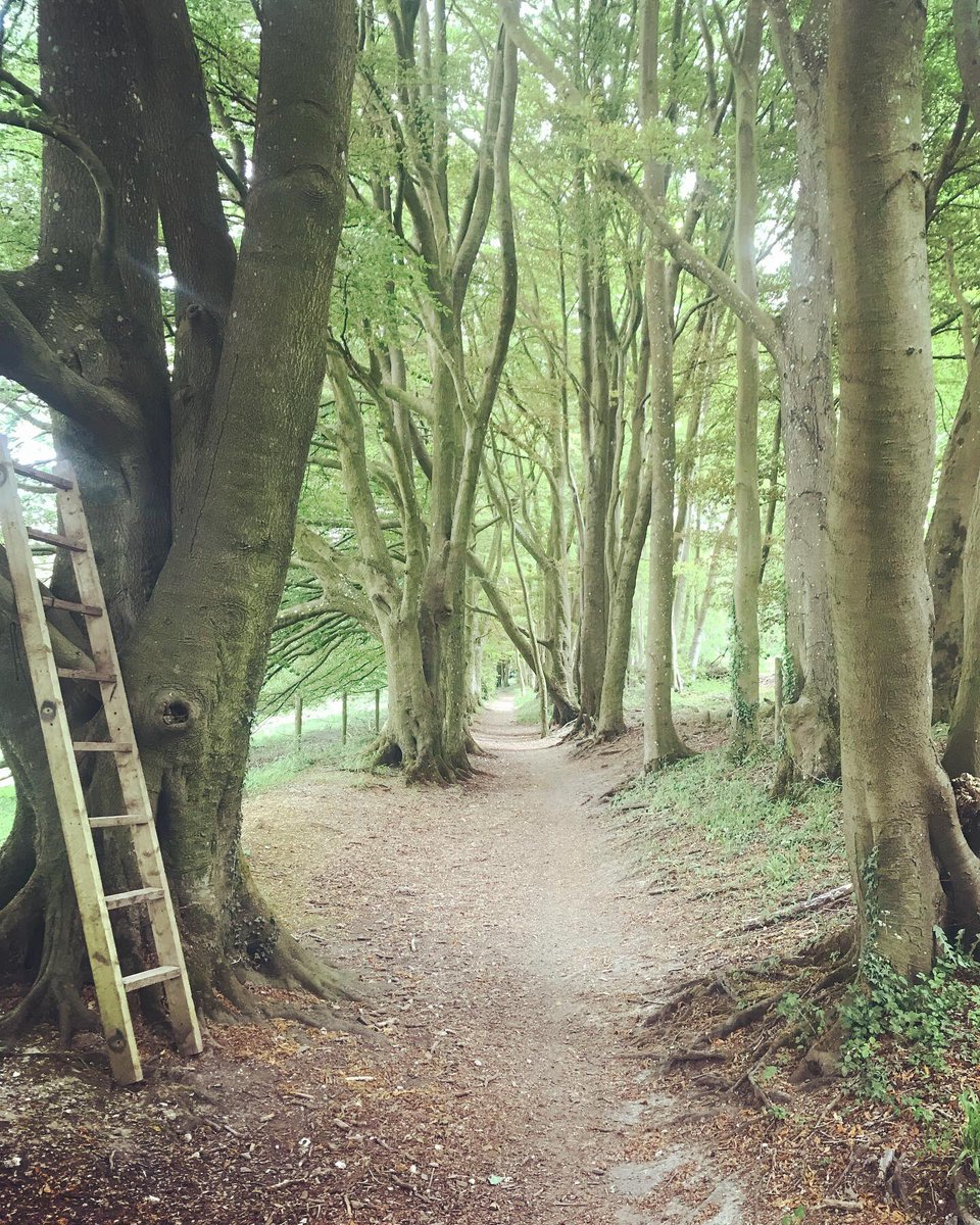 Meon Valley Trail (@TheMVT) | Twitter