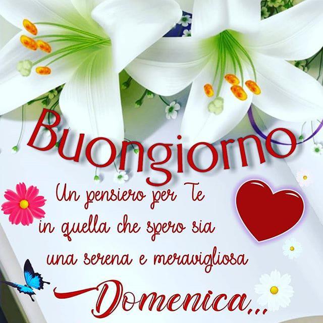 Gabriella On Twitter Buon Pomeriggio Amicicon Lombrello