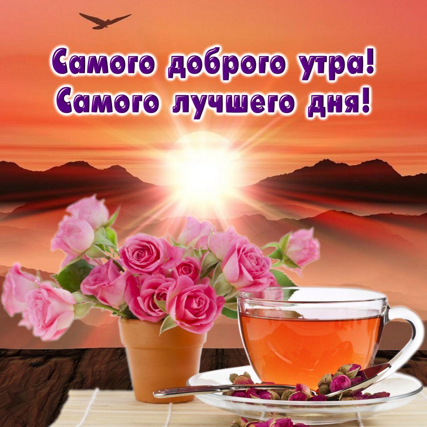 Картинка доброго утра удачного дня, открытка цветами