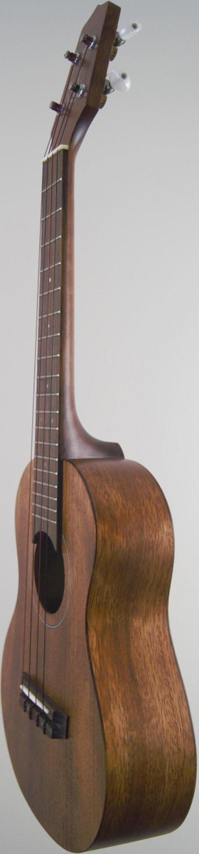 Takamine laminate mahogany concert ukulele