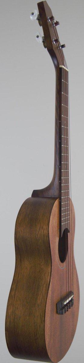 esp laminate mahogany concert ukulele