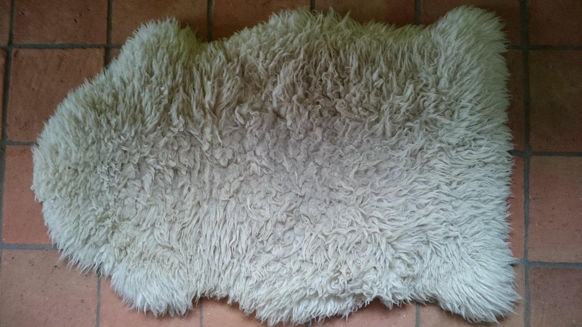 Iemand tips hoe je een echte #schapenvacht, dus met leer, t beste kan schoonmaken, opfrissen en zacht maken?