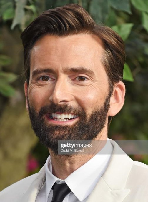 David Tennant at the Good Omens London premiere - Tuesday 28th May 2019