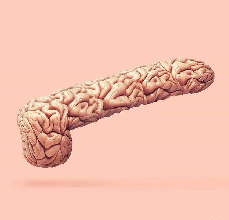 Penis brain jokes
