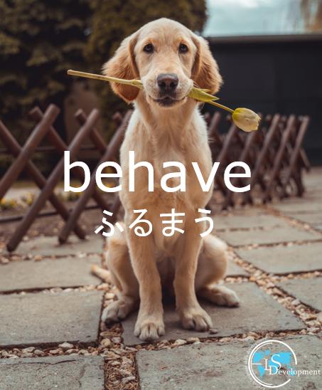 #一日一単語 #英単語 #英語の例文#ふるまう #behaveYou have to behave politely.礼儀正しく振舞わなければいけません。 ?? #英会話教室 #英会話スクール #オンライン英会話 #英会話 #英単語帳 #勉強垢 #英語垢 ※英単語は複数の意味を持つことがありこれは一例です。