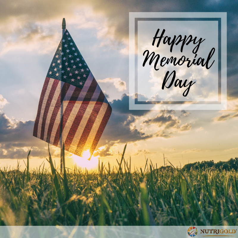Happy Memorial Day, from Team NutriGold. https://t.co/68yc2bOK25