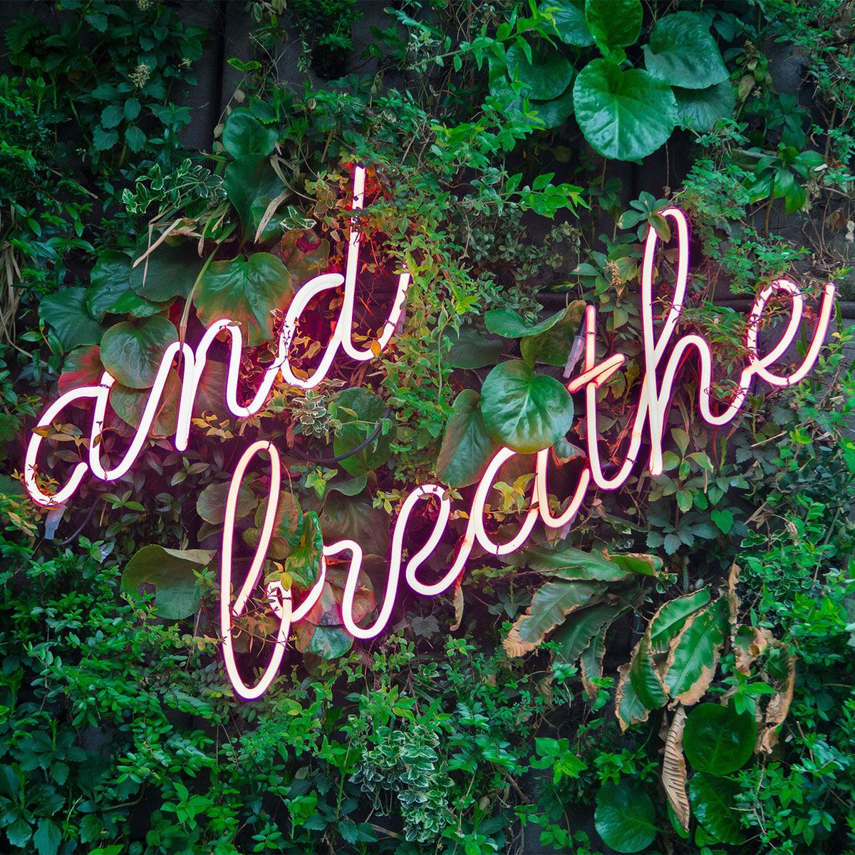 Give yourself permission to take time to breathe, to live life and to be present.   #justbreathe #shinethroughtherain #shine #foundation #newmarket  #canada #north #charity #nonprofit #illness #funding  #donations #help #patients #health #sickness  #recovery #happiness