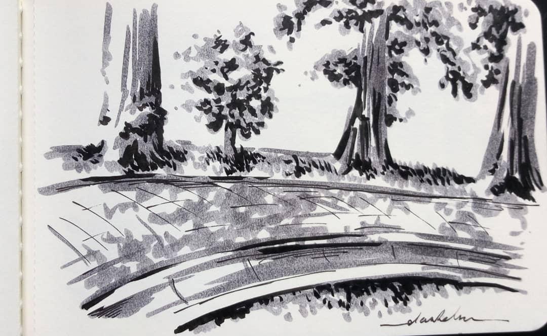 Path #dailyart #dailyillustration #trees #nature #blackandwhitedrawing #branches #path https://t.co/OTPp5M9v9P