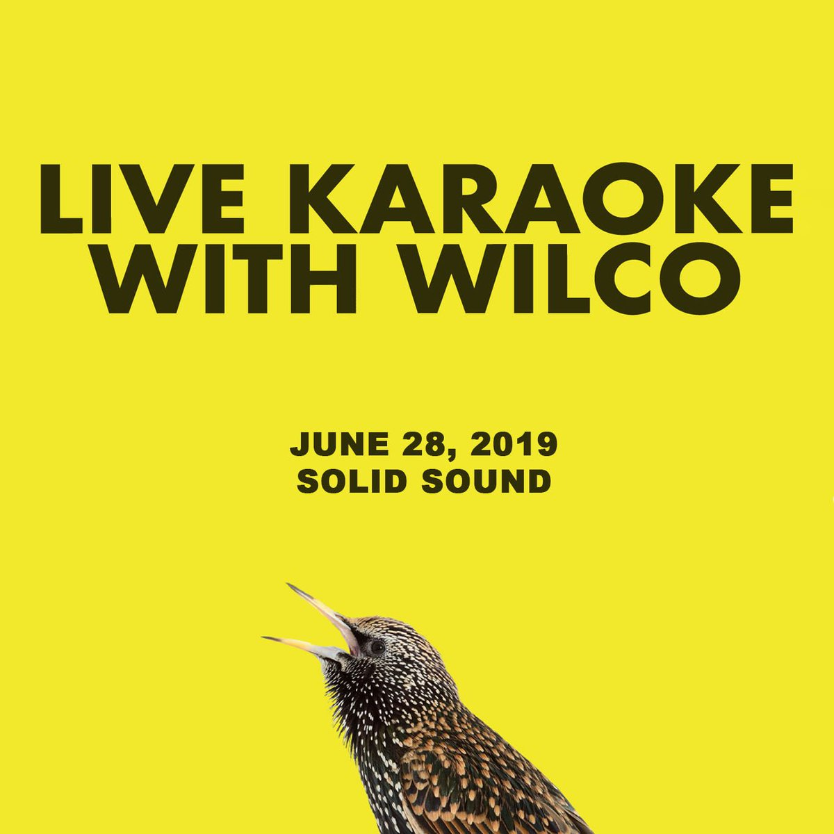 Solid Sound Festival on Twitter: