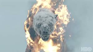 #alaskahappyhour I fly alaska air because I like the thrill of flying in antique aircraft, getting drunk in the cold, and running from flaming zombie polar bears