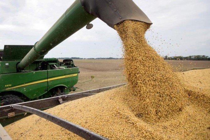 #IngenieroLuiggi | Robaron 150.000 kilos de cereal