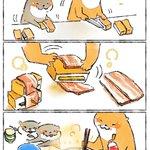 厚揚げで簡単料理!チーズとベーコンなんて最高の組み合わせ!
