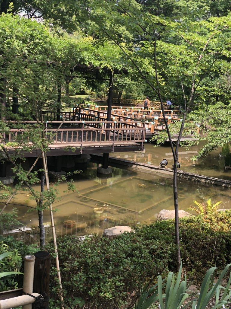 原宿駅からデザフェスギャラリーに行くのに竹下通りは人酔いしそうなので、迂回し東郷神社を初めて通りました。近くの予備校に行っていたので付近はよく歩いていたのだけど、こんな景色がこんなところにあろうとは!