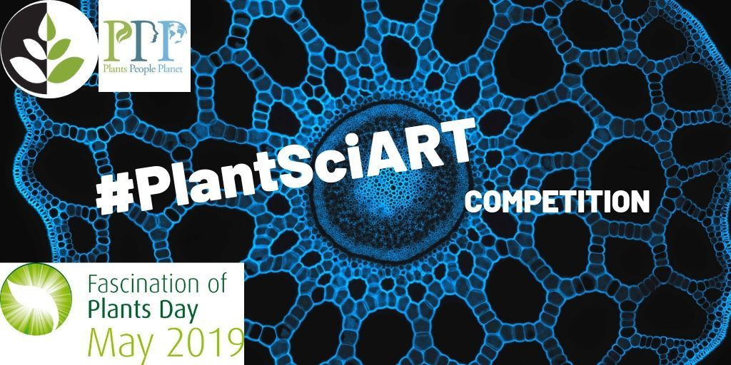 TOMORROW IS THE LAST DAY TO PARTICIPATE!   How? Briefly: 1. have a photograph/GIF/video taken 2. share your creation WITH a catchy #plantsci caption along with hashtags #PlantsciART #PlantDay & handles @GlobalPlantGPC @plantspplplanet  All info ➡️➡️ https://buff.ly/2GV8ZPH