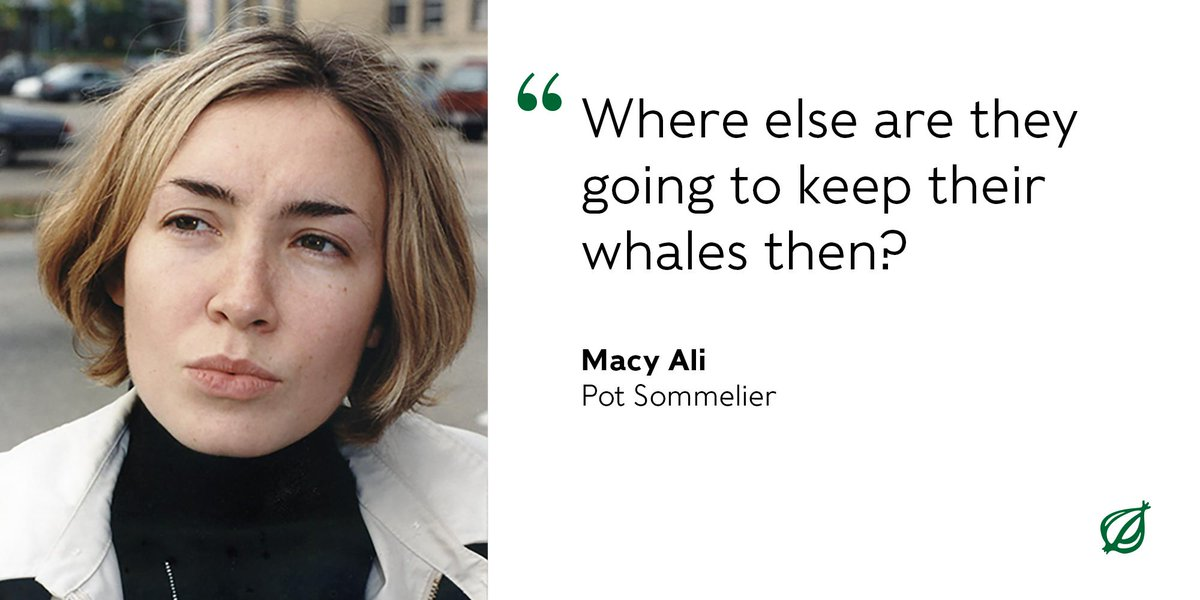 Canada Bans Keeping Whales, Dolphins In Captivity  https:// trib.al/ZMYAGEa      #WhatDoYouThink? <br>http://pic.twitter.com/728ZC8GGAY