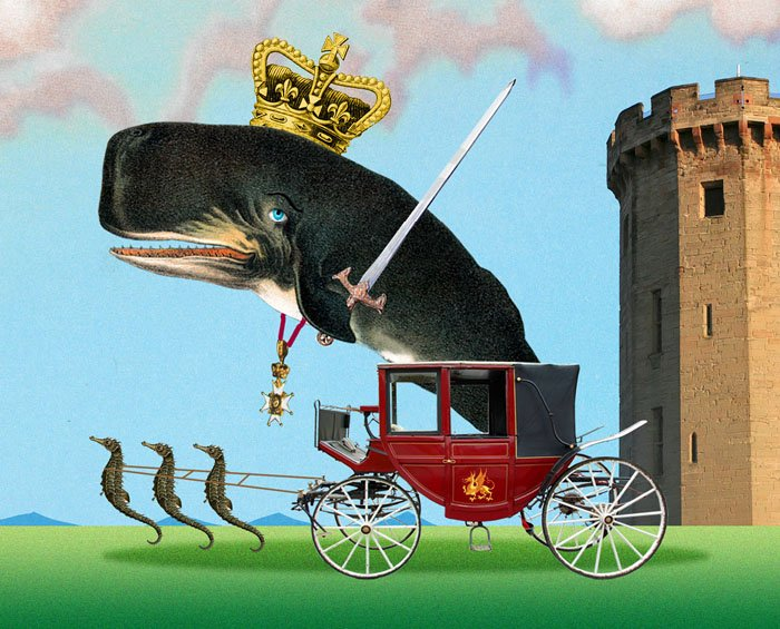 Prince of Whales   #Inners<br>http://pic.twitter.com/iiIaRP5ALN
