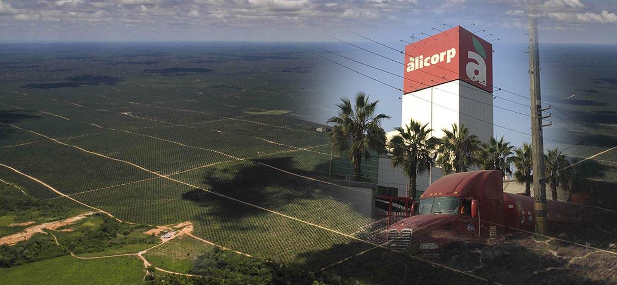 #PalmasparaNadie @ConvocaPe descubrió que #Alicorp compra aceite de palma que tiene su origen en frutos cultivados en zonas deforestadas por el grupo Melka y ahora la Mesa Redonda sobre el Aceite de Palma Sostenible (RSPO) rechazó investigar el caso https://buff.ly/2F3Ro72