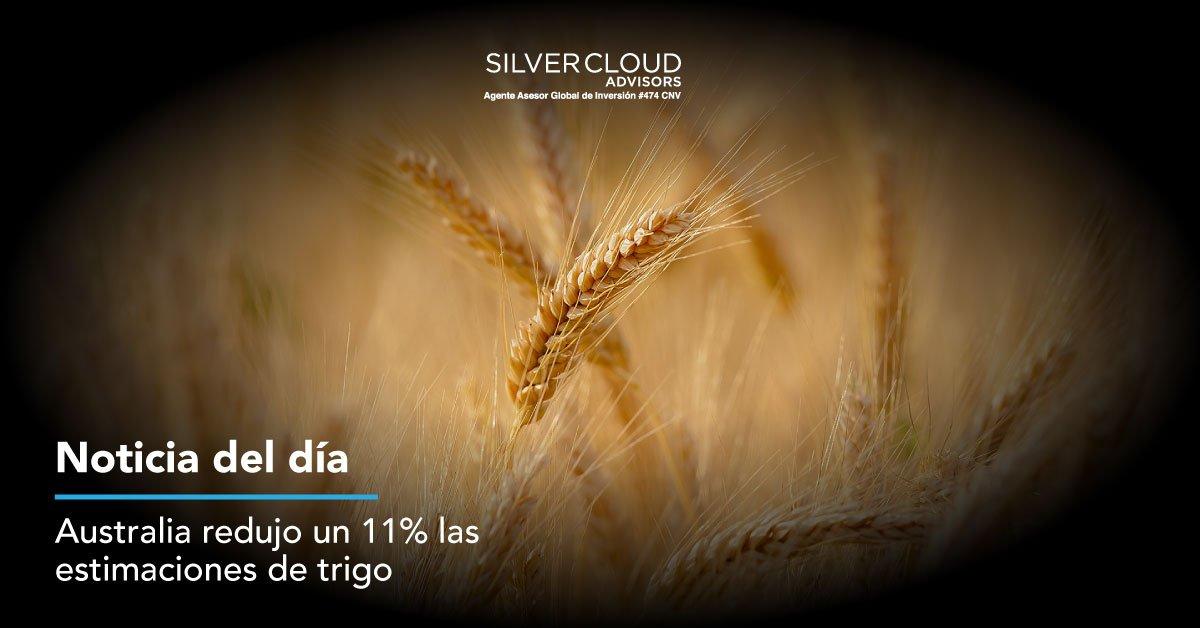 Por la sequía, Australia reduce en un 11% las expectativas de cosecha de trigo. Se suma a la sequía que sufre Europa y es uno de los motivos de la suba en el precio de este cereal. Nota completa → http://bit.ly/2ZuefAt #Noticias  #SilverCloudAdvisors Fuente: Chacra